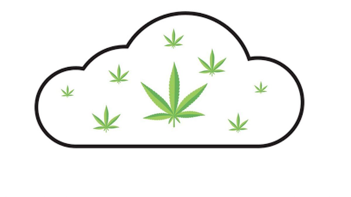 Electronic Records Management for Illinois Marijuana Dispensaries