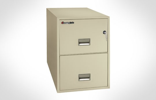 2G2531 SentrySafe Two Drawer Legal ***Discontinued***